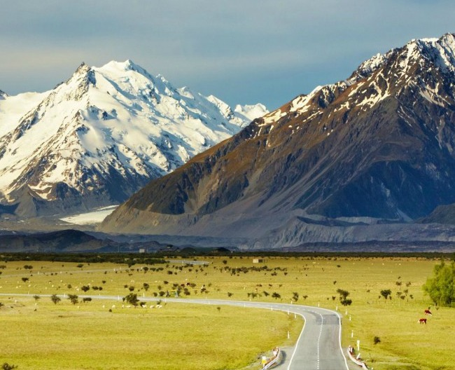 NZ Road View